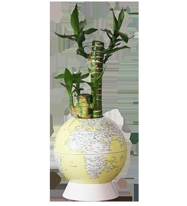 5英寸盆栽地球仪